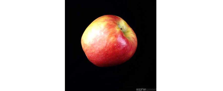 01-rouge-pomme-amour-sophie-gosset