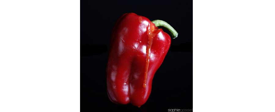 02-rouge-poivron-sophie-gosset
