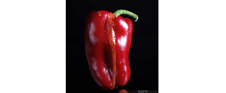 03-rouge-poivron-sophie-gosset