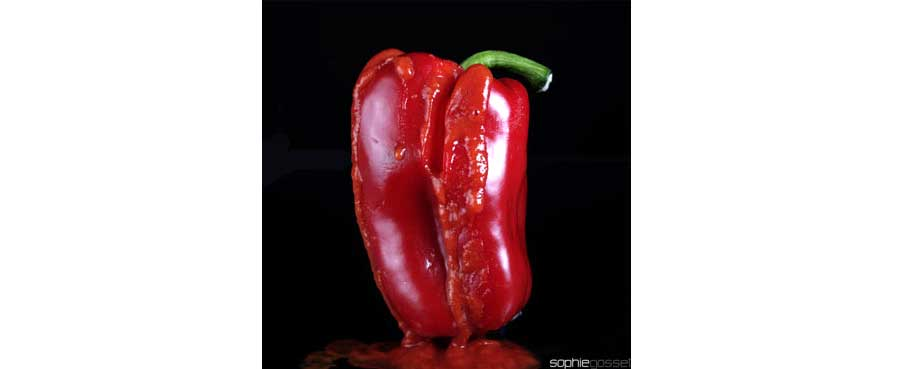 05-rouge-poivron-sophie-gosset