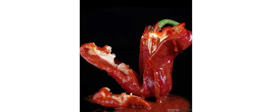 11-rouge-poivron-sophie-gosset