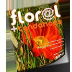 Floral et tendances # 09