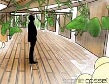 Projet «Jardin de curiosité»